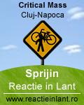 ReactieInLant